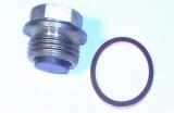 Verschlußschraube mit Magnet und Dichtring